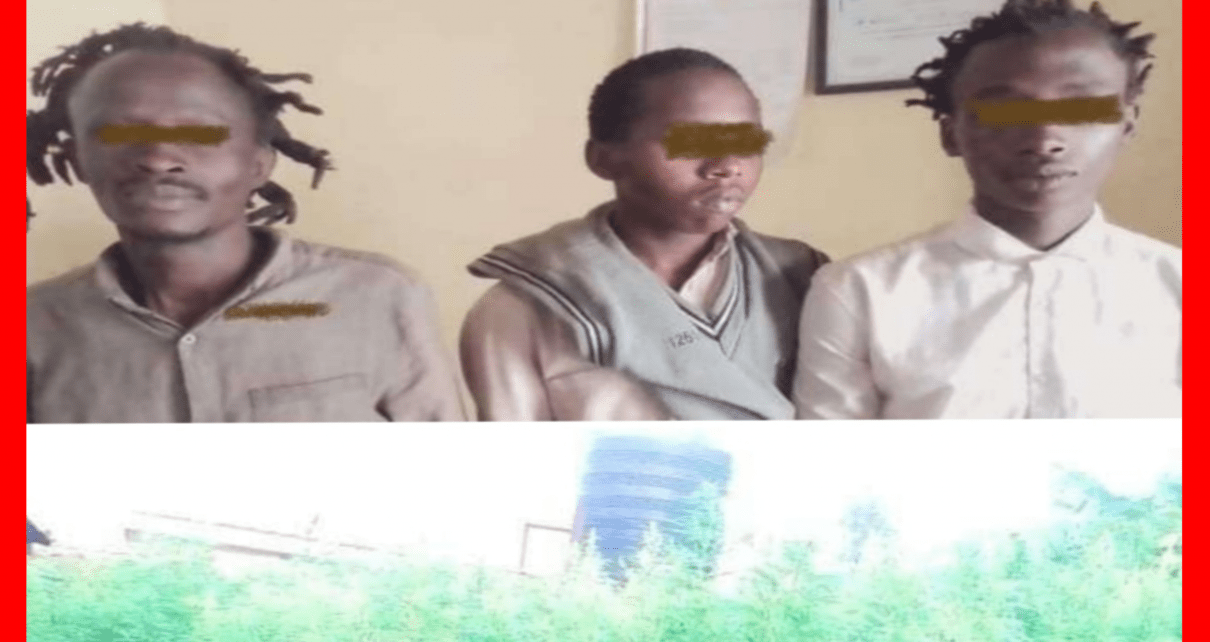 """Mambichwa Ni Noma""""- 3 Arrested Cultivating Bhang Worth 15 Million;Tells Police It's Legal To Plant Weed"""