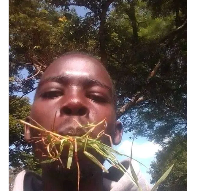 BRIAN KIBET, JKUAT student who was arrested after Trespassing State House shares photos eating grass says he is mad
