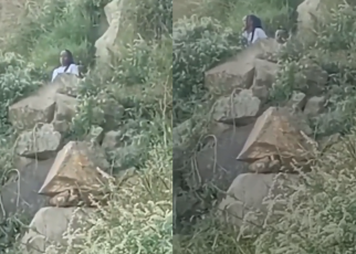 Vasha chronicles: lady spotted being chewed in the thickets in Naivasha,(VIDEO) WRC rally event