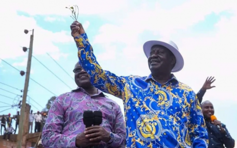 RAILA ODINGA promises to help Miraa farmers export their produce to SOMALIA and DRC when he becomes President